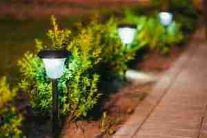 best ideas to light small garden